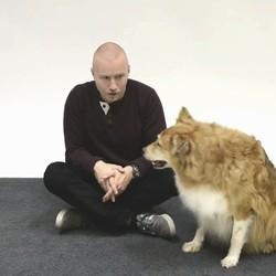 un homme discute avec des chiens