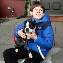 un petit garçon décidé à aider un chien