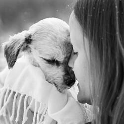 Elle photographie les derniers moments de maîtres et leurs chiens en fin de vie