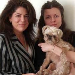justice chien etre vivant et pas bien materiel