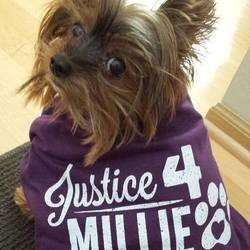 Justice4millie