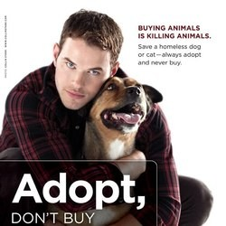 Kellan Lutz Twilight PETA campagne adoption
