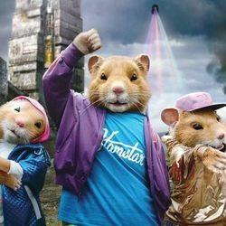 pub kia hamsters lmfao