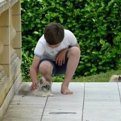Les enfants et les lapins