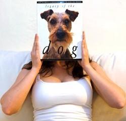 livres chien été