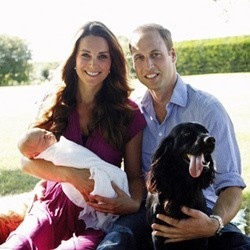 lupo chien prince william