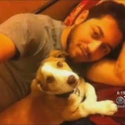 un soldat américain sauve un petit chien en afghanistan