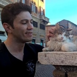 chat sauvé homme
