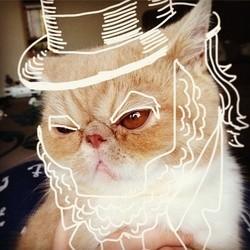 Amanda Coffelt dessine sur son chat Bob