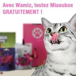 miaoubox
