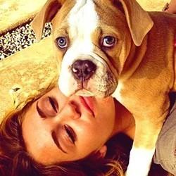 Le chien de la star Miley Cyrus mange tous ses diamants