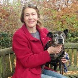 Un chien retrouve ses maîtres 9 ans après sa disparition