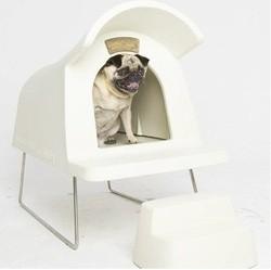 niche chien accessoires pour chien design