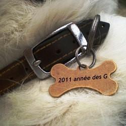 nom de chien en G 2011