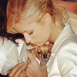 Paris Hilton Tinkerbell