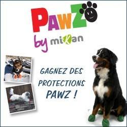 concours chien pawz protections pattes