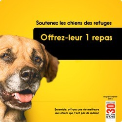 pedigree agir pour adoption