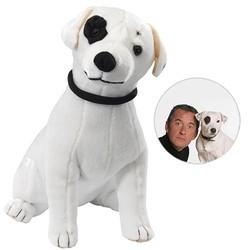 christophe dechavanne chien peluche