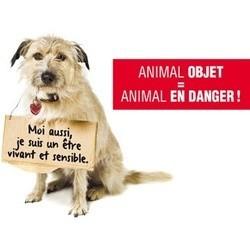 pétition pour un nouveau statut juridique pour les animaux