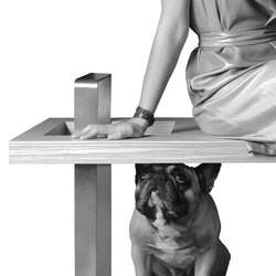 petsmood mobilier design animaux chien chat