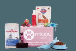 miaoubox alimentation accessoires chat