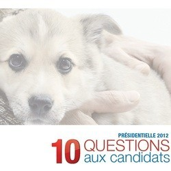 présidentielle cause animal vote