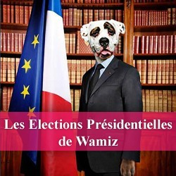 elections presidentielles wamiz chien chat rongeur