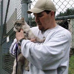 chats prisonniers photos