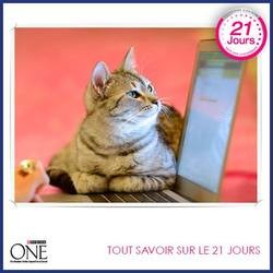 programme  21 jours purina one