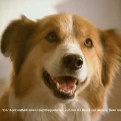 publicité que les chiens entendent nestlé beneful