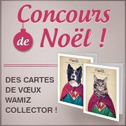concours noel wamiz cartes de voeux collector