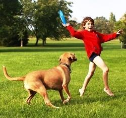 meilleures races de chien pour enfants