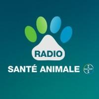 Logo radio santé animale