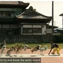 record du monde chien corde a sauter guinness book