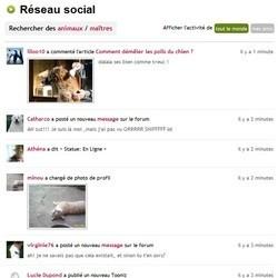 réseau social wamiz