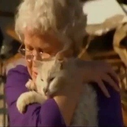 chat tornade survie interview télévision