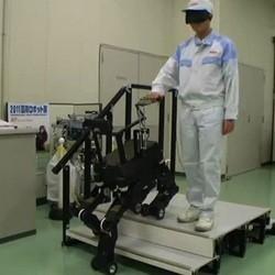robot chien guide d'aveugles video japon