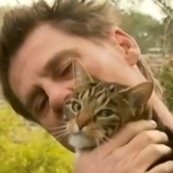 chat héros