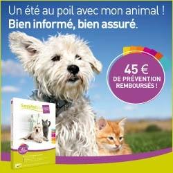 santevet assurance chien chat concours