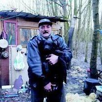 sdf chien fourriere euthanasie