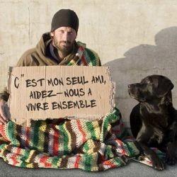 sdf chien pancarte aidez nous