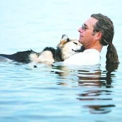 La solidarité des internautes sauve la vie d'un chien