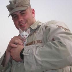 des soldats sauvent un chaton en irak