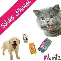 accessoires chien chat rongeur soldes