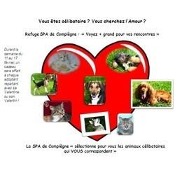 spa refuge adoption saint valentin