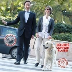 stéphane Bern parrain chiens guides d'aveugles