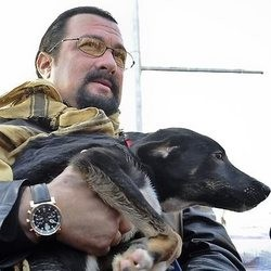 Steven Seagal adopte un chien en Roumanie