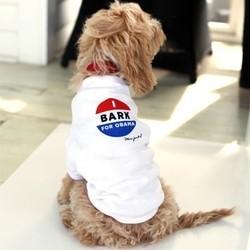 des vêtements et accessoires pour chiens et chats sur la boutique en ligne de Barack Obama