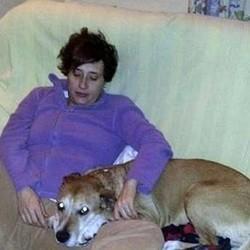 teresa romero et son chien excalibur