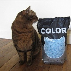 litière color nullodor